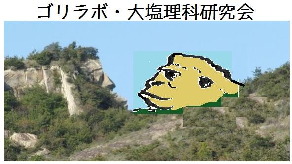Gorirabo023873